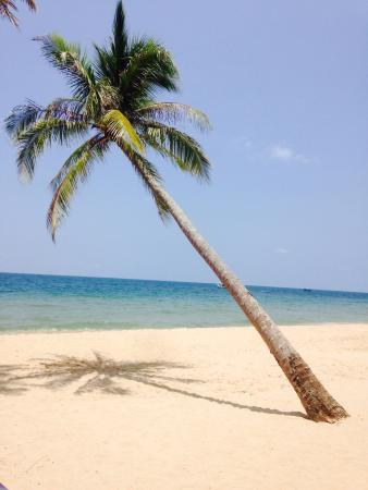 Coco Palm Beach Resort & Spa: The beach