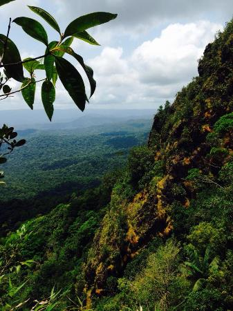 Maya Guide Adventures: View from the top