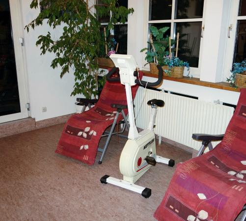Hotel Am Josephsplatz: Gym - bike