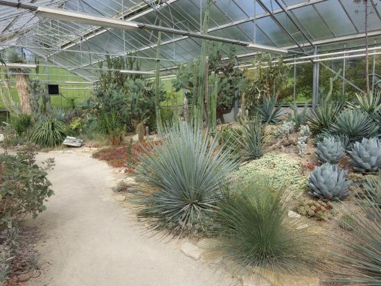 Int rieure des serres tropicales picture of les jardins for Jardin japonais le havre