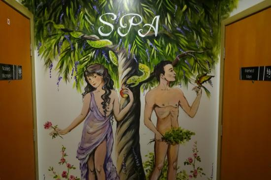 Lavendel Spa Hotel: Till Poolen -  damer resp. herrar
