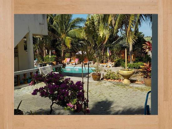 Club Coconut Resort : accès a la piscine