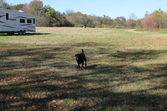 Whispering River Resort: Big open field at campground away from sites.
