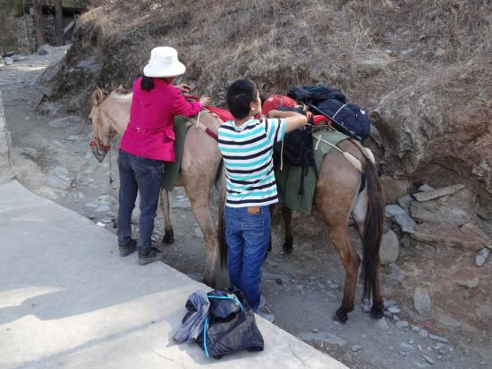 Tiger Leaping Gorge (Hutiao Xia): One of the guys who hired us mules - with his mum :)