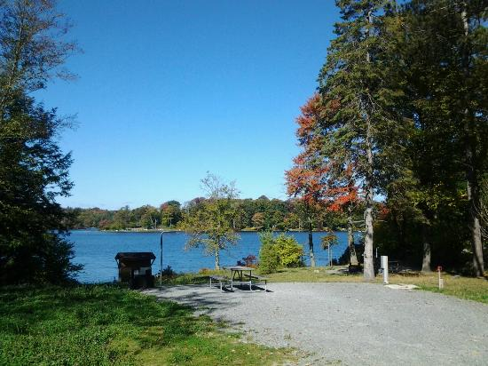 Promised Land State Park: pickerel point campsite