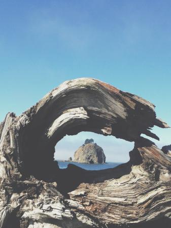 La Push, WA: Gorgeous views