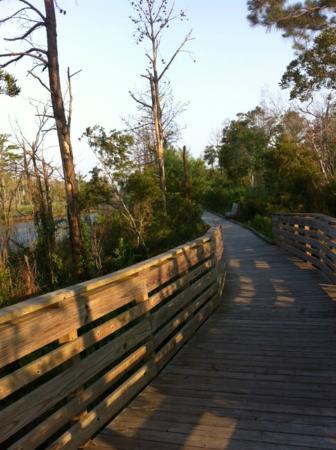 Sandy Run Park