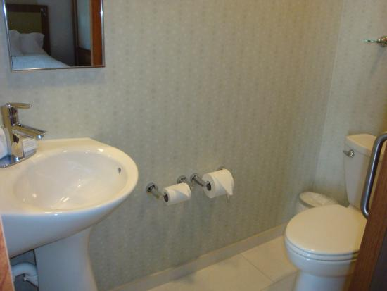 SpringHill Suites Grand Junction Downtown/Historic Main Street: bathroom 1: toilet and sink