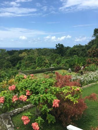 Yaaman Adventure Park: Plantation Gardens