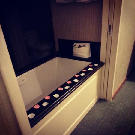 Town & Country Inn and Suites : Air Bath Tub