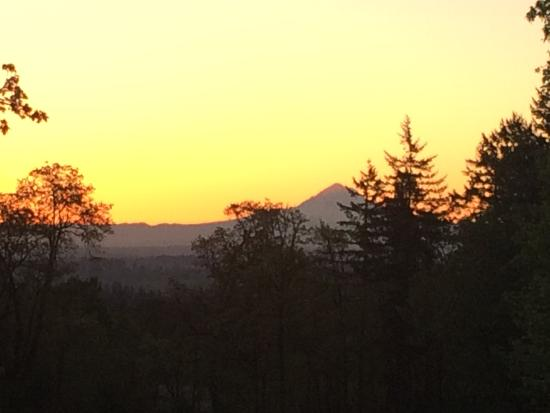 The DreamGiver's Inn : Sunrise over Mt. Hood, from DreamGiver's Inn back porch