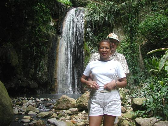 NATURE'S PARADISE ADVENTURES: SECRET WATERFALLS IN THE RAIN-FOREST.