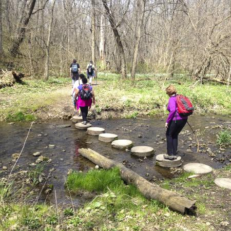 White Pines Forest State Park: Stepping stones - this is where a hiking stick is handy.