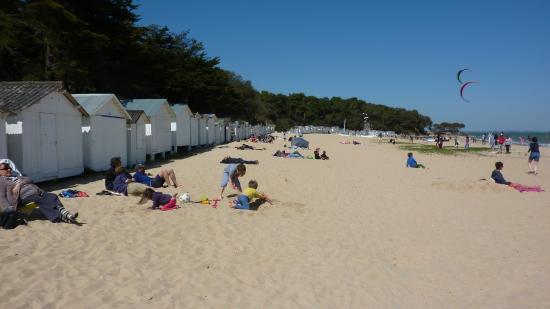 la plage des sableaux picture of plage des sableaux. Black Bedroom Furniture Sets. Home Design Ideas