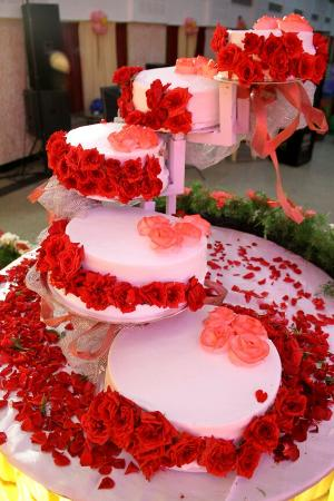 The Cake World