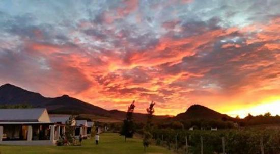 بادابولت سيلف كايترينج كوتيدجيز: Sunset over Paddabult
