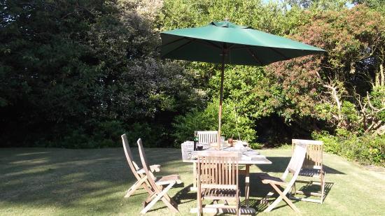 Allt Y Rheini Boutique B&B: summer garden