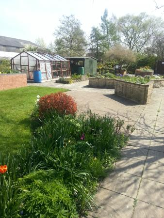 Coventry, UK: Ryton Gardens April 2015