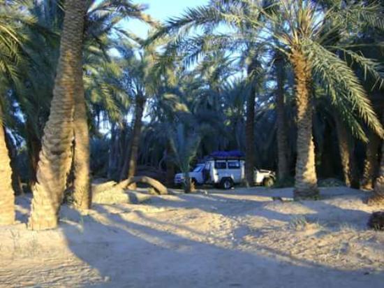 Dating Kairo Egypt