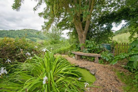 Cwmdu, UK: View from the Studio Garden