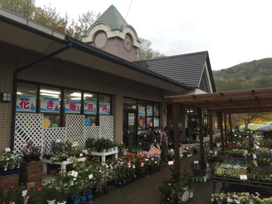 ‪Tochigi Flower Center‬