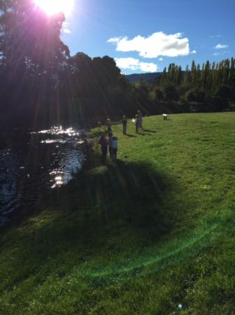 Gorgeous surrounds - perfect spot for kids to explore