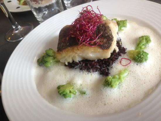 Le Potiron Gourmet: Fish and risotto with foam