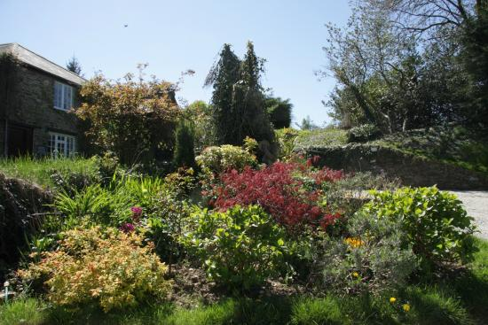 Exceptionnel Trenant Park Cottages: Sunny Gardens
