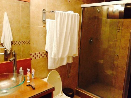 Wyndham Garden Panama City : Foto do cabide de toalhas