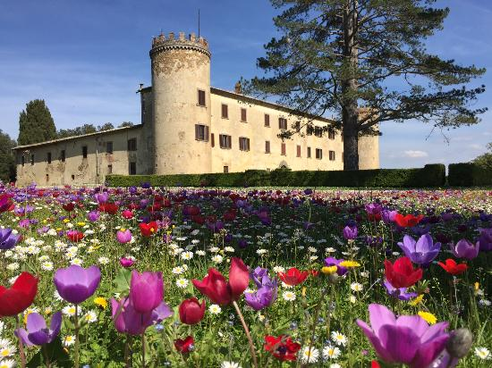 Calcione Castle and Country: Il Castello