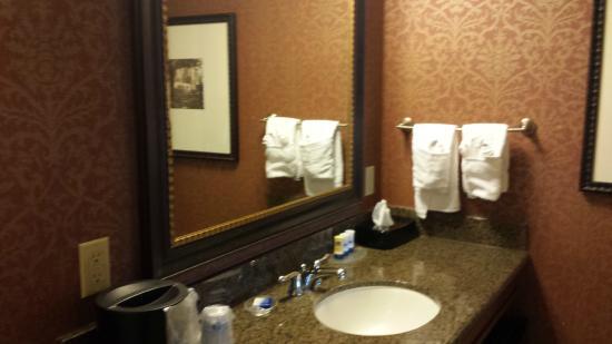 BEST WESTERN PLUS Savannah Historic District : The bathroom 2