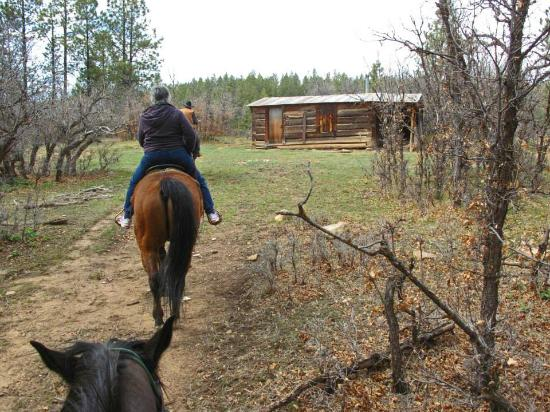 Rimrock Outfitters: Old Cabin