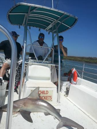 Drifter Excursions: Biggest shark of the year!