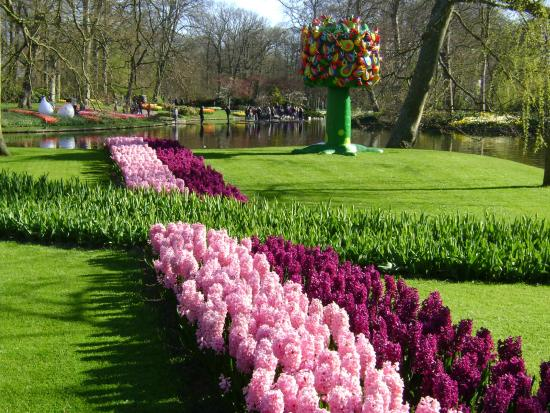 parque keukenhof lisse holanda picture of keukenhof lisse tripadvisor. Black Bedroom Furniture Sets. Home Design Ideas