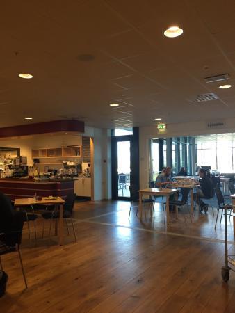 Cafe Morgenroed
