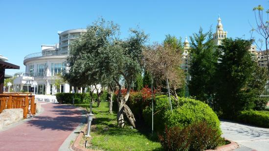 Schone Anpflanzungen In Der Anlage Picture Of Liberty Hotels Lara