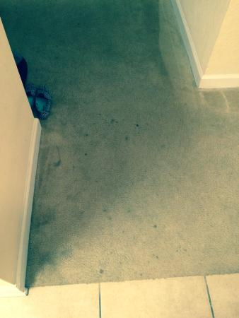 Stained Old Carpets Foto Di Tuscana Resort Orlando By