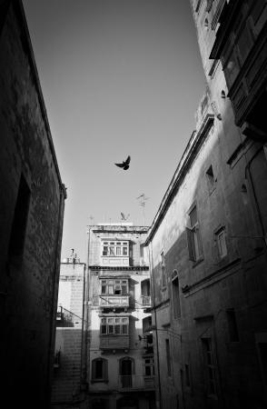 Photograph Malta