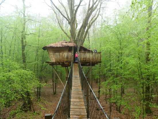 Picture of les cabanes du bois landry champrond en gatine tri - Les cabanes du trappeur ...