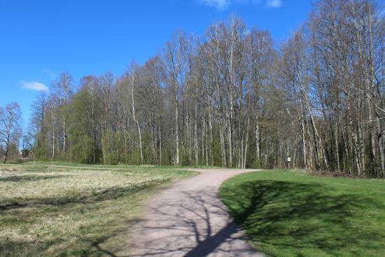 Hultsfred, Sverige: Naturreservat Alkärret