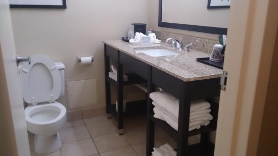 Clarion Inn Airport : Clean bathroom