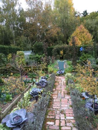 Seddon, New Zealand: Barewood Garden