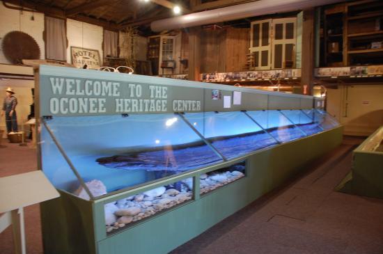 Oconee History Museum