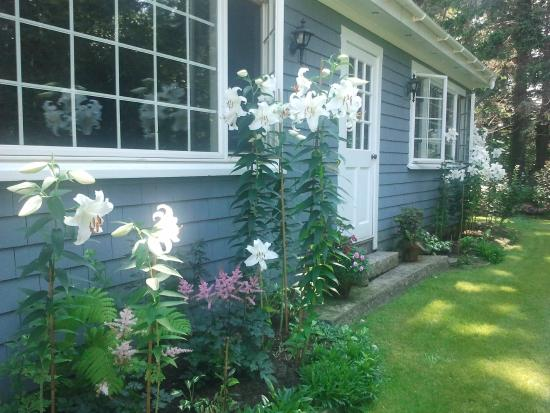 The Crocker House Country Inn: Casablanca lilies