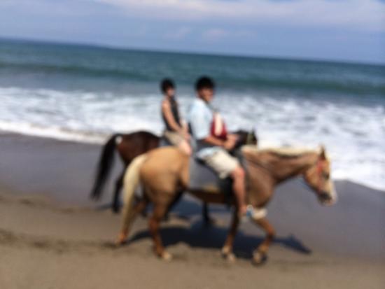 Bali Horse Adventure : photo0.jpg