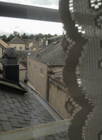 Hotel Le Francais : The view