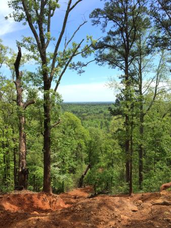 Gilmer, TX: View from the top of a trail