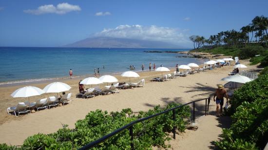 Andaz Maui At Wailea Resort Beach Chairs On The