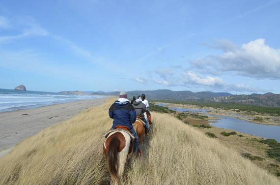 Bob Straub State Park: Horseback rides in Bob Straub by Green Acres Beach Rides
