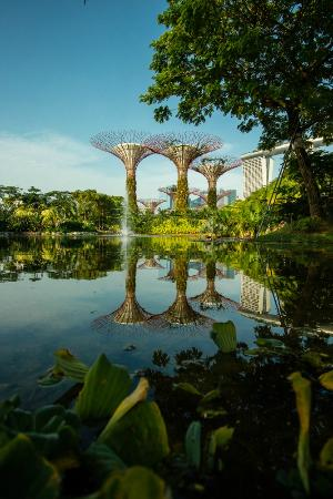 gardens by the bay - Garden By The Bay Fee